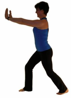 exercises for seniors - soleus stretch