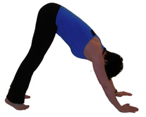 calf stretch - downward dog