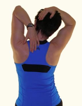 neck stretch levator scapula